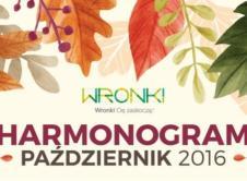 Przedstawiamy harmonogram wydarzeń w Gminie Wronki na październik 2016.