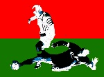 Liga Nadwarciańska