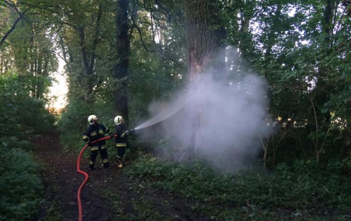 We wtorek, 15 sierpnia, strażacy z OSP Wronki zostali zadysponowani do płonącego drzewa na ulicy Kasztanowej. Przed godziną 19.00 jednostka z Wronek została poinformowana o pożarze drzewa. Strażacy udali się na ulicę Kasztanową, na miejscu zastali płonące wewnątrz drzewo, które znajdowała się w środku niewielkiego lasu. Położenie drzewa powodowało, że pożar mógłby szybko rozprzestrzenić się […]